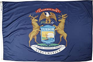 product image for Annin Flagmakers Model 142670 Michigan State Flag 4x6 ft. Nylon SolarGuard Nyl-Glo 100% Made in USA to Official State Design Specifications.