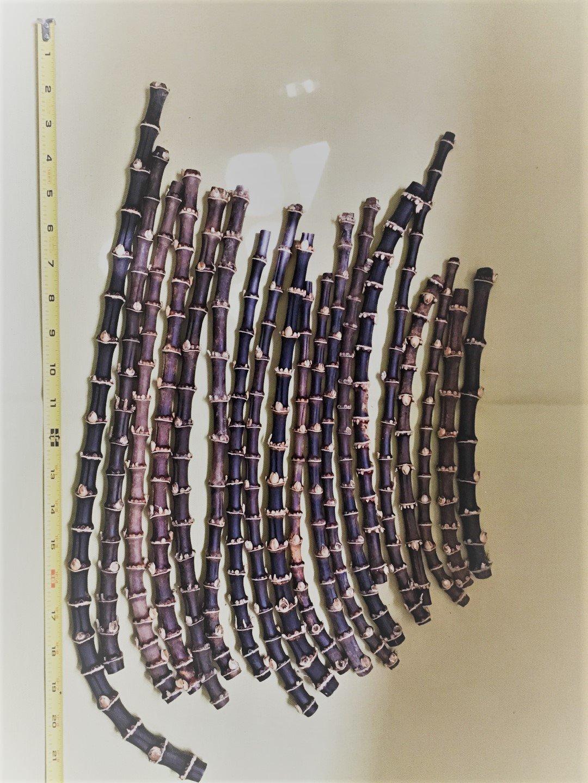 黒竹の根竹(800g) パイプなどの自作に最適 B06XCV78L6