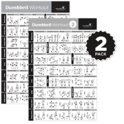 Buy Vol 12 Dumbbell Exercise Poster 2 Pack Laminated Workout