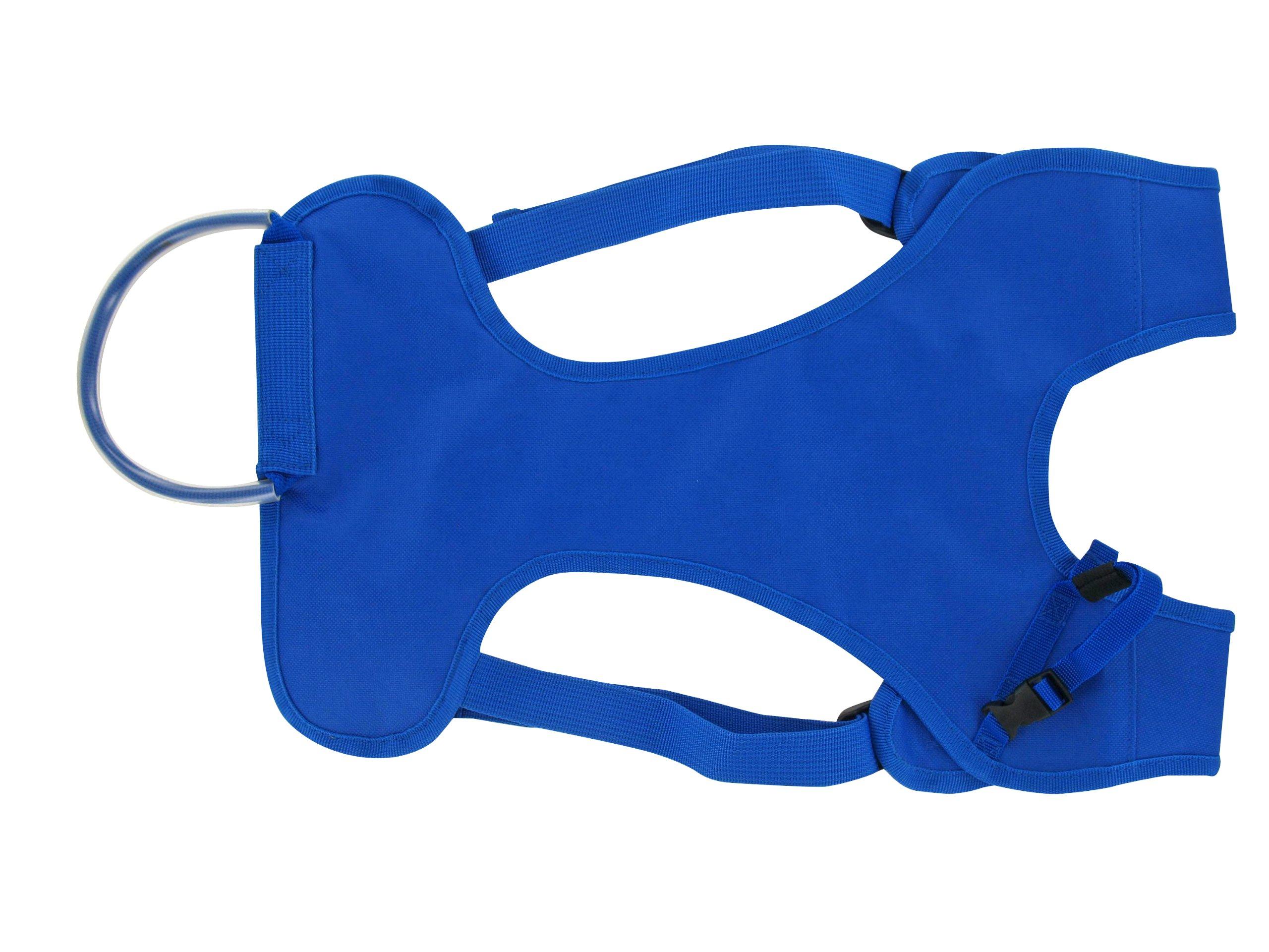 Wantalis - Skiback - Un produit révolutionnaire pour porter vos skis en libérant vos mains - Bretelles adaptables et réglables product image