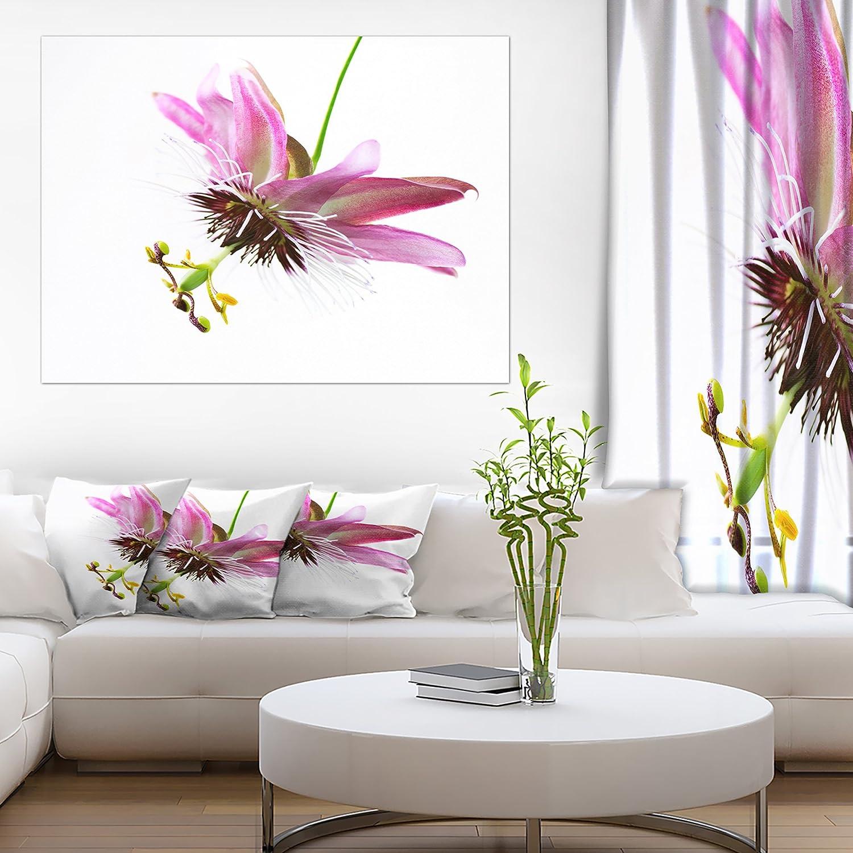 Designart Passiflora Flower over White Large Animal on Canvas Art Wall Photgraphy Artwork Print