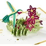 Hallmark Signature Paper Wonder Pop Up Mothers Day Card (Hummingbird) (1299MBC2281)