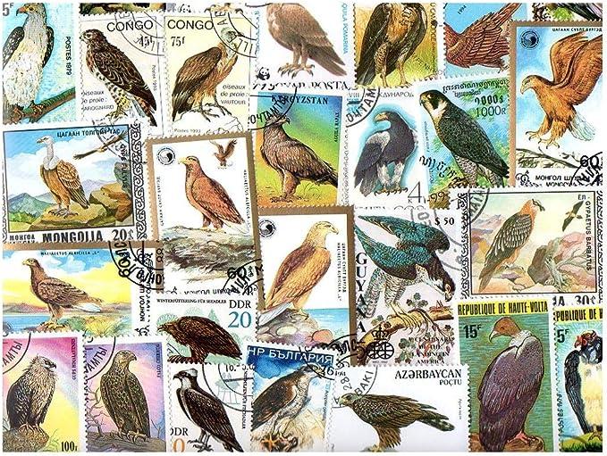 Las Aves de Presa Rapaces 25 Colección de Diferentes Sellos para coleccionistas: Amazon.es: Juguetes y juegos