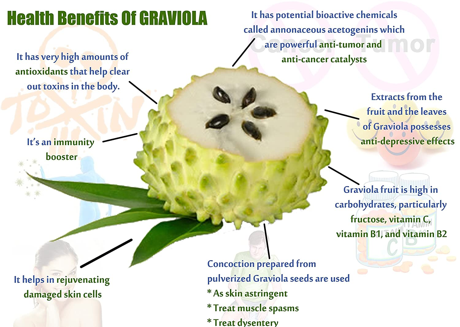 Image result for graviola