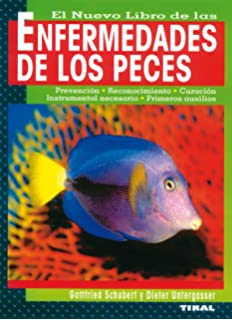 Nano-acuarios 12-35 litros (Mascotas en casa): Amazon.es: Jakob Geck, Ulrich Schliewen: Libros