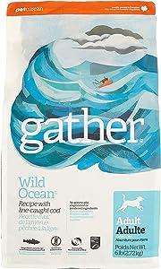Petcurean Gather Wild Ocean Recipe Dry Dog Food - 6 lb. Bag (815260008044)