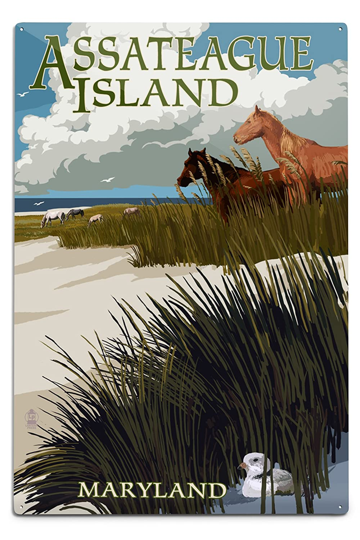 非売品 Assateague島 18、メリーランド州 Metal – Horses and Dunes 12 x x 18 Metal Sign LANT-43987-12x18M B06Y1KNWL9 12 x 18 Metal Sign, さのめん:b0e1a641 --- 4x4.lt