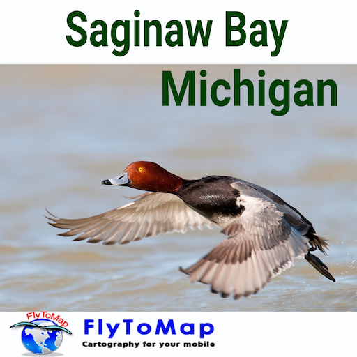 Saginaw Bay Gps Map Navigator (Saginaw Marina)