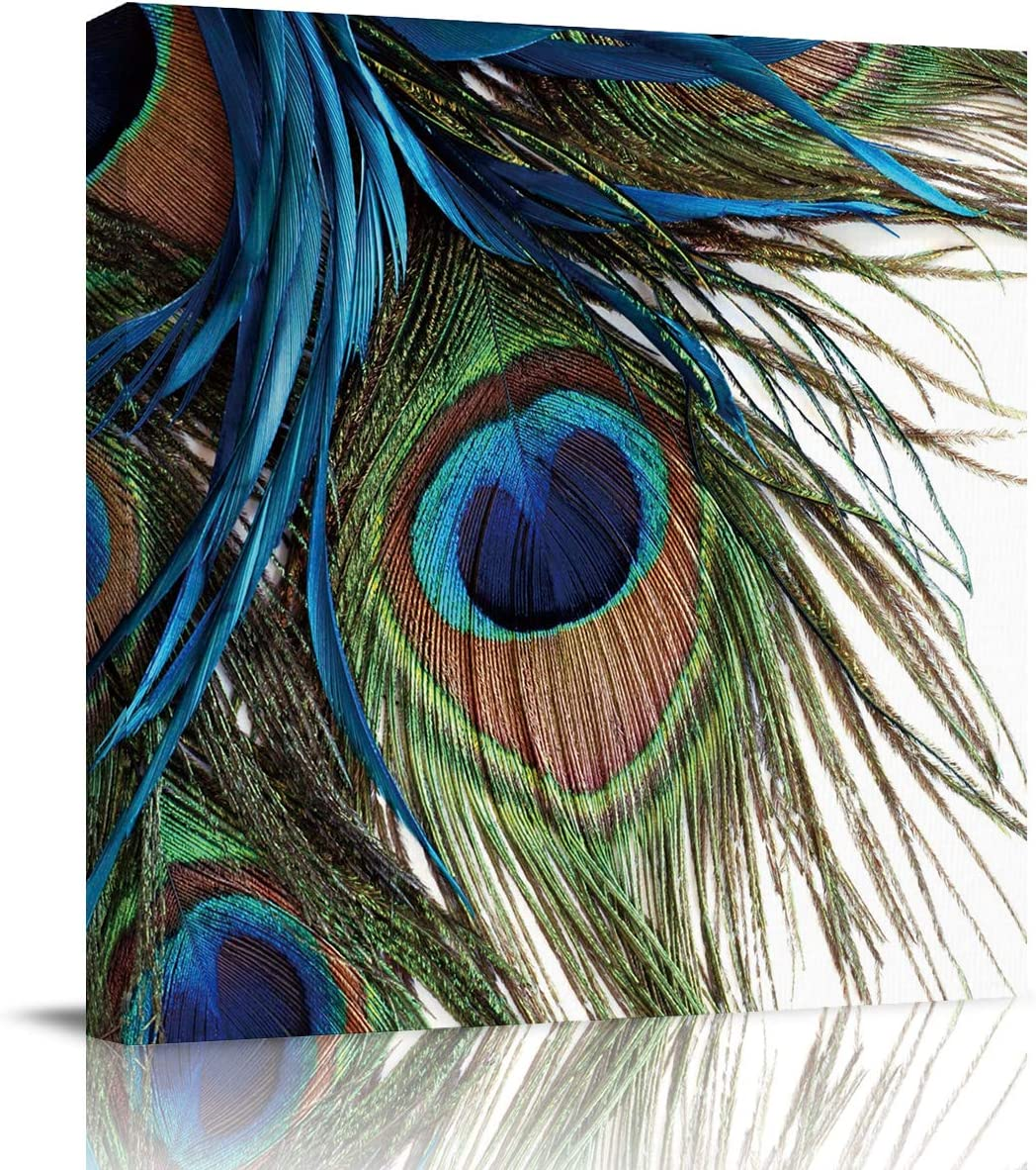 T&H XHome Wall Art Oil Paintings on Canvas Print Peacock Feather Arts Office Artwork Home Decoration Living Room Bedroom Bathroom Giclee Walls Decor,Wooden Framed Ready to Hang 12x12in