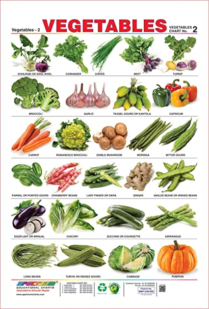 Espectro Educación Preescolar Niños Aprendizaje verduras ...