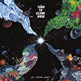 Turn To Clear View (REISSUE LP)