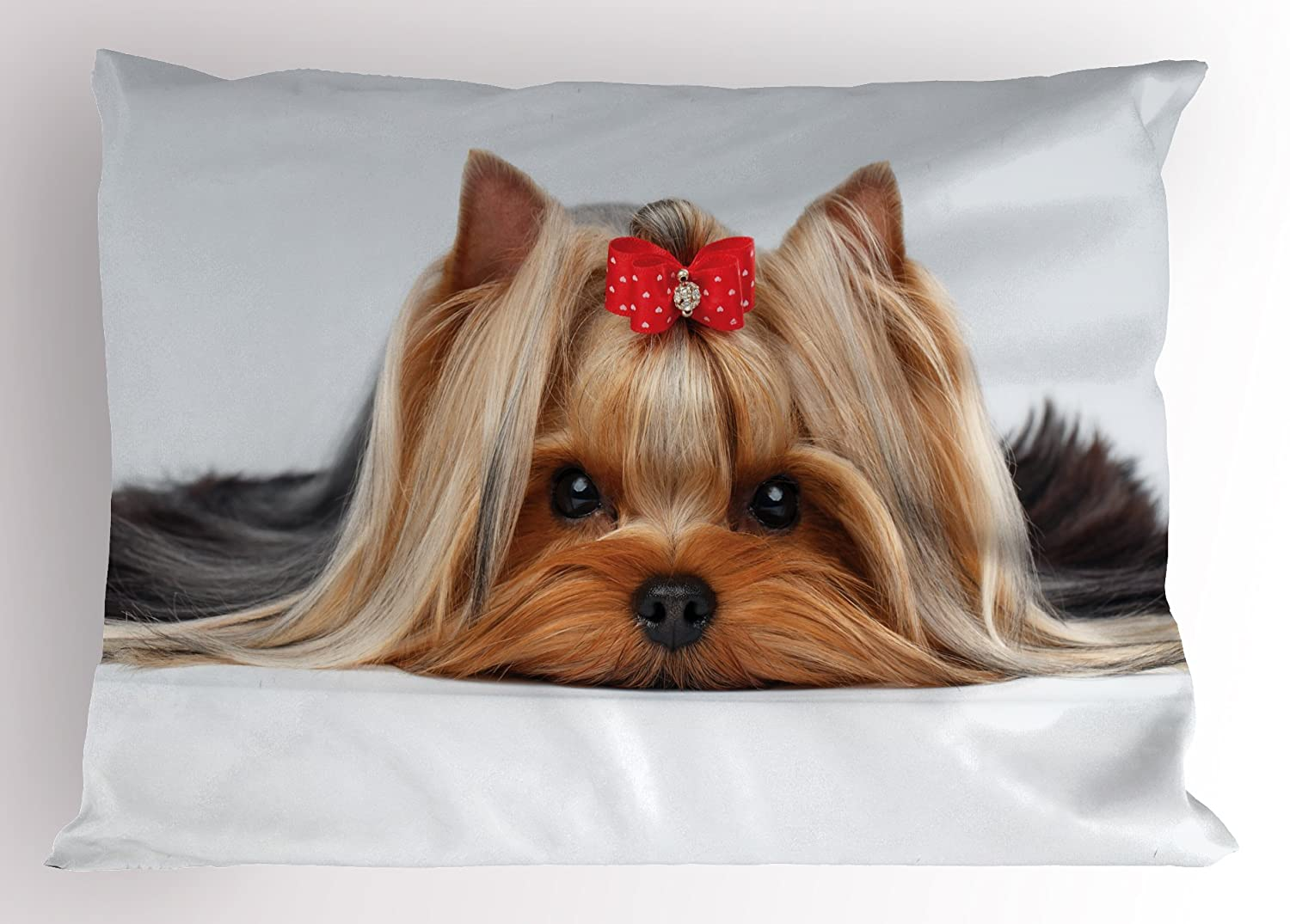 Yorkie Pillow Sham by Ambesonne、Closeup Of Lying Yorkshire Terrier with a cuteリボンYorkie Love犬の肖像、装飾標準Kingサイズ印刷枕カバー、ブラウンホワイト 36