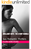 BRILLIANT BOYS: The Story Bundle: Gay Romantic Thrillers