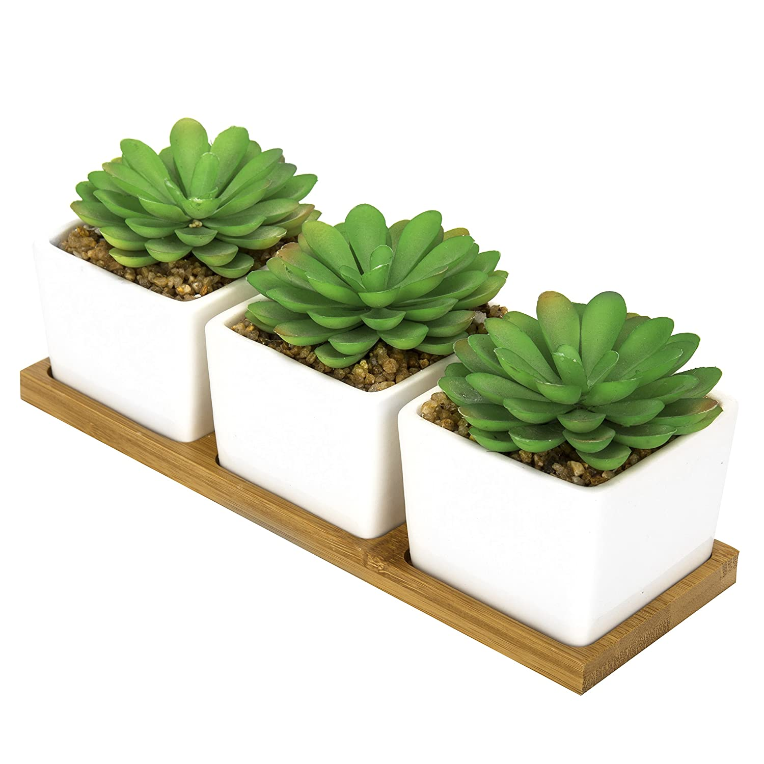 MyGift Set of 3 Artificial Echeveria Succulent Plants in Square White Ceramic Pots and Removable Bamboo Tray