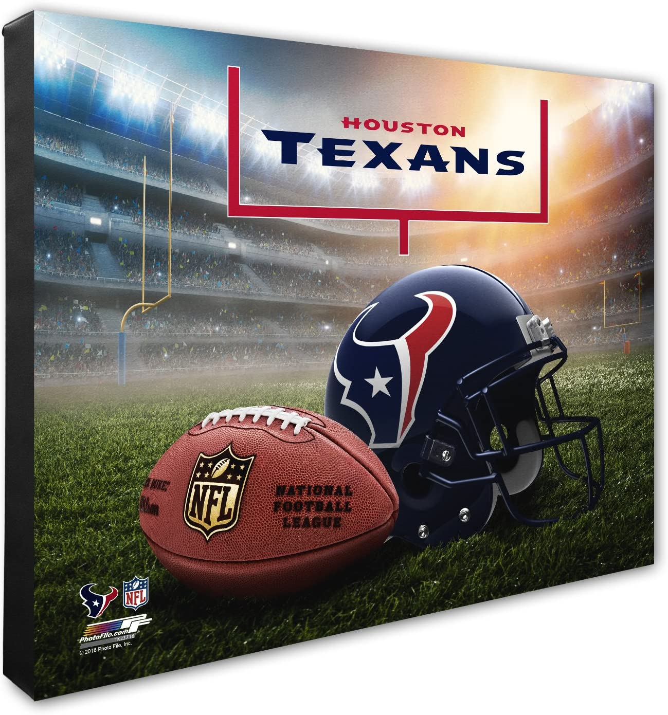NFL Helmet /& Stadium High Resolution Canvas