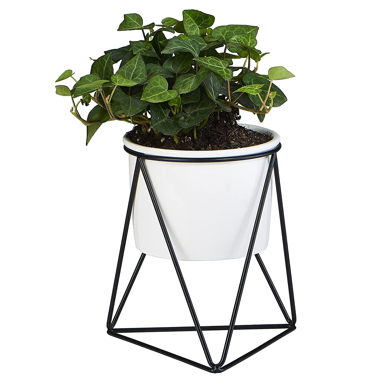 Planter Pot Indoor, Flowerplus 4.33 Inch White Ceramic Medium Succulent Cactus Flower Plant Round Bowl with Metal Stand Holder and Plants Sign for Indoors Outdoor Home Garden Kitchen Decor (Black)
