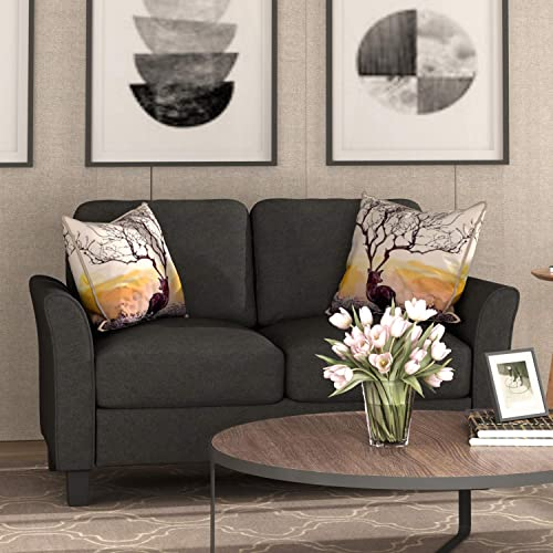 Harper Bright Designs Living Room Furniture Loveseat Sofa Double Seat Sofa