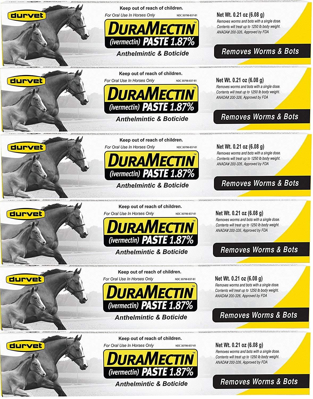 Durvet Duramectin Equine Wormer Paste - 6 Tubes