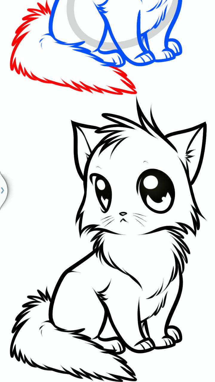 How to Draw Anime Animals: Pro Edition: Amazon.ca ...