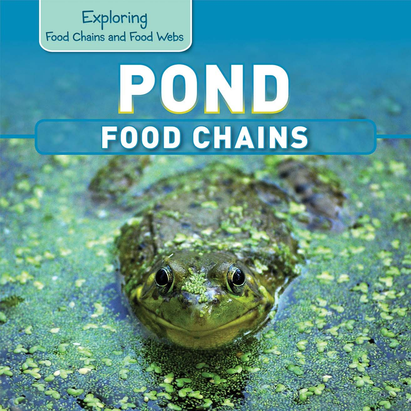 Pond Food Chains (Exploring Food Chains and Food Webs) pdf