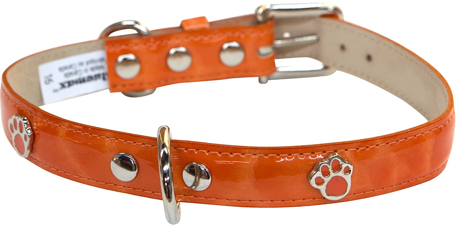blueemax Italian Synthetic Turtle Shell Print Dog Collar with Paw Stud, 5 8-Inch by 10-Inch, orange