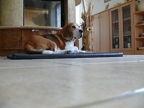 Marley - Ortho ortopédico hundematte piel sintética Perros cama colchón 100 x 150 x 7 cm Color Blanco: Amazon.es: Productos para mascotas