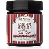 Shea Terra Organics Rose Hips Replenish Face Crème | Daily Moisturizer Spa Treatment | All Skin Types – 2 oz