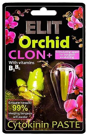 Elit orquídea clon + cytokinine Clonación pasta, agente estimulante para Burgeon despertar con vitaminas B1 y B6 para orquídeas y muchas otras flores.