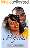 Perfection (Sisters-in-Love Book 1)