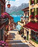 Paint by Numbers-DIY Digital Canvas Oil Painting Adults Kids Paint by Number Kits Home Decorations- Stone Steps 16 * 20…