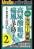 名医がカラー図解! 高尿酸血症・痛風は予防できる! (2) 病気の進行に気づかない高尿酸血症 (impress QuickBooks)