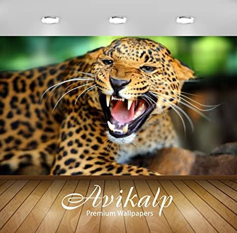 Buy Avikalp Exclusive Awi2368 Angry Leopard Shows Sharp