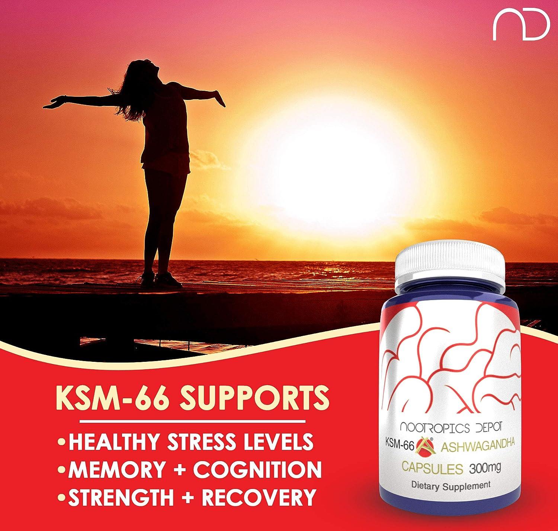 KSM-66 Ashwagandha Capsules | 300mg | 180 Count | Withania somnifera  Extract | Ayurvedic