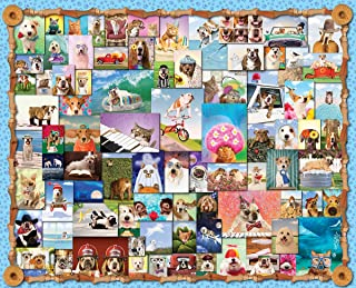 product image for Springbok's 1000 Piece Jigsaw Puzzle Animal Quackers, Multi
