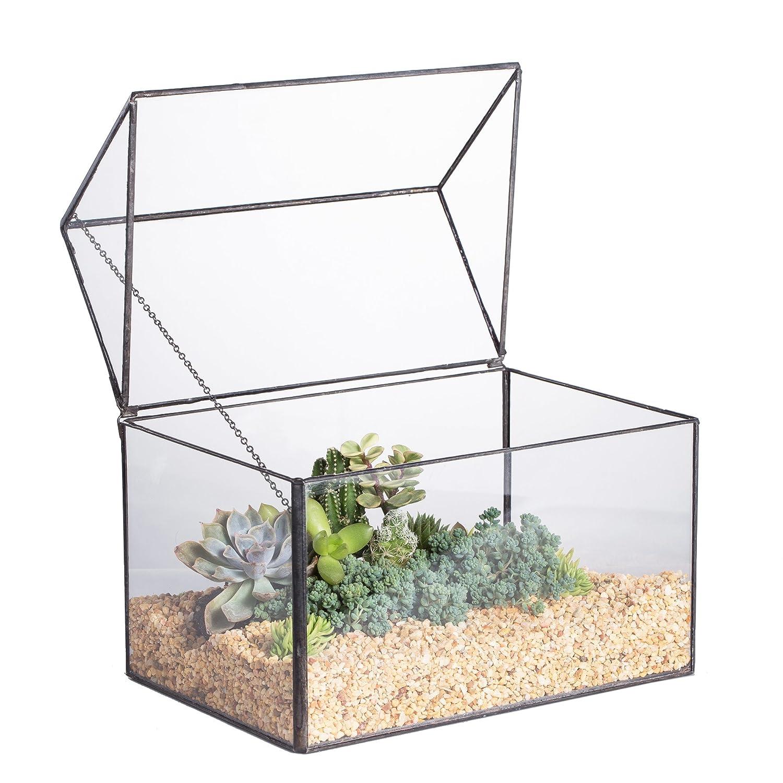 Grande maison close forme géométrique en verre terrariumn Table Plante à fleurs mousse Fougère avec couvercle basculant Reptile 21, 8 x 15 x 19 cm Zhongpengcheng 20160218003