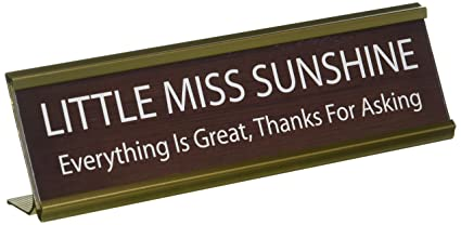plaque name plates desk signs office custom cheap executive door tremendous design top funny