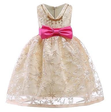 Amazon nssmwttc flower girls wedding dresses kids pageant party nssmwttc flowers girls dresses kids 2018 christmas baby toddler a line embroidery dress size 2t mightylinksfo