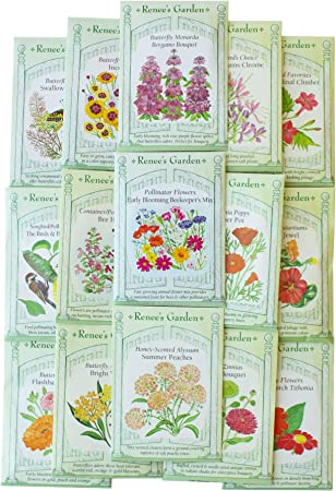 BENEFICIAL BUG MIX 100 Seeds Attract Insects Bee Pollinators Flower Garden Herb
