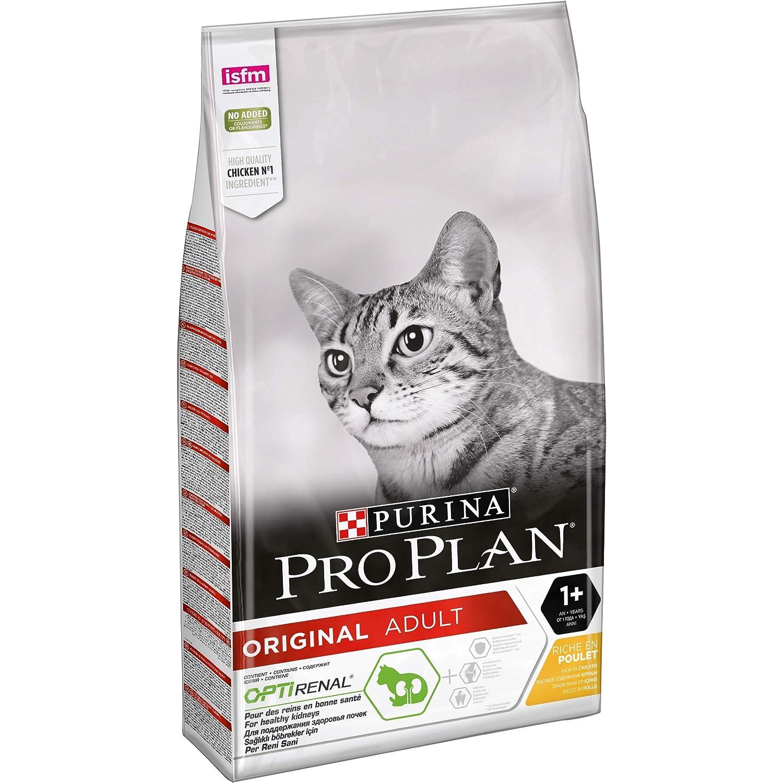 Purina ProPlan Adult pienso para Gato Adulto Pollo 10 Kg: Amazon ...