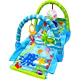 Toyshine 3 in 1 Grows with Baby Play Mat, Musical Gym for Kids