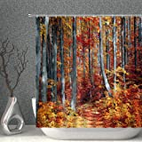 Fall Forest Shower Curtain Autumn Trees Woodland Nature Season Red Gold Grey Decor Fabric Bathroom Curtains,70x70 Inch…
