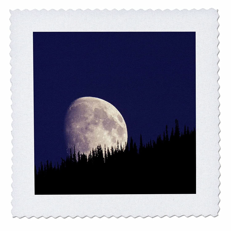 3dRose qs/_92042/_3 Montana US27 GJE0033 8 by 8-Inch Gavriel Jecan Quilt Square Glacier National Park Moon and Forest