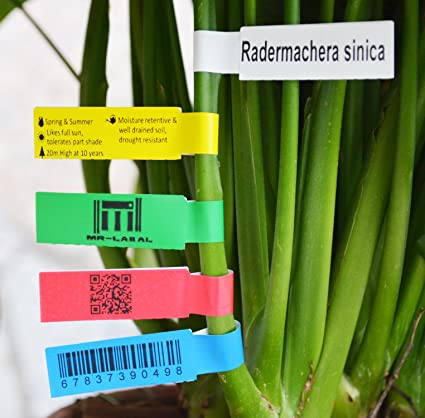 graphic about Printable Plant Labels titled : Mr-Label Printable Self-adhesive Plant Label upon