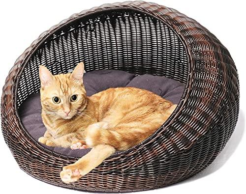 D GARDEN Wicker Cat Bed for Indoor Cats – a Covered Modern Cat Hideaway Hut of Rattan Houses Pets in Dome Basket, Washable