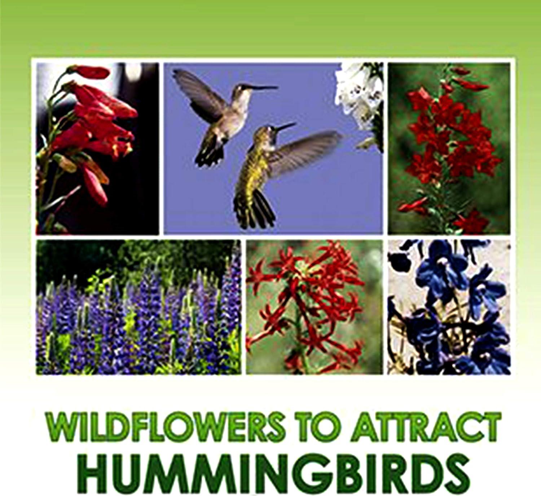 Hummingbird Nectar Wildflower Seeds Bulk + 8 Bonus Gardening eBooks + Open-Pollinated Wildflower Seed Mix Packet, Non-GMO, NO FILLERS, Annual, Perennial Wildflower Seeds Year Round Planting - 1 oz