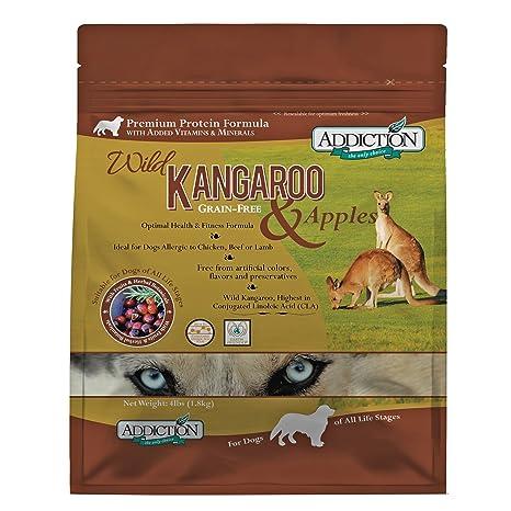 kangaroo nervous system