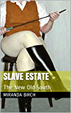 Slave Estate: The New Old South (Mistress Lucy's Estate Book 2) (English Edition)