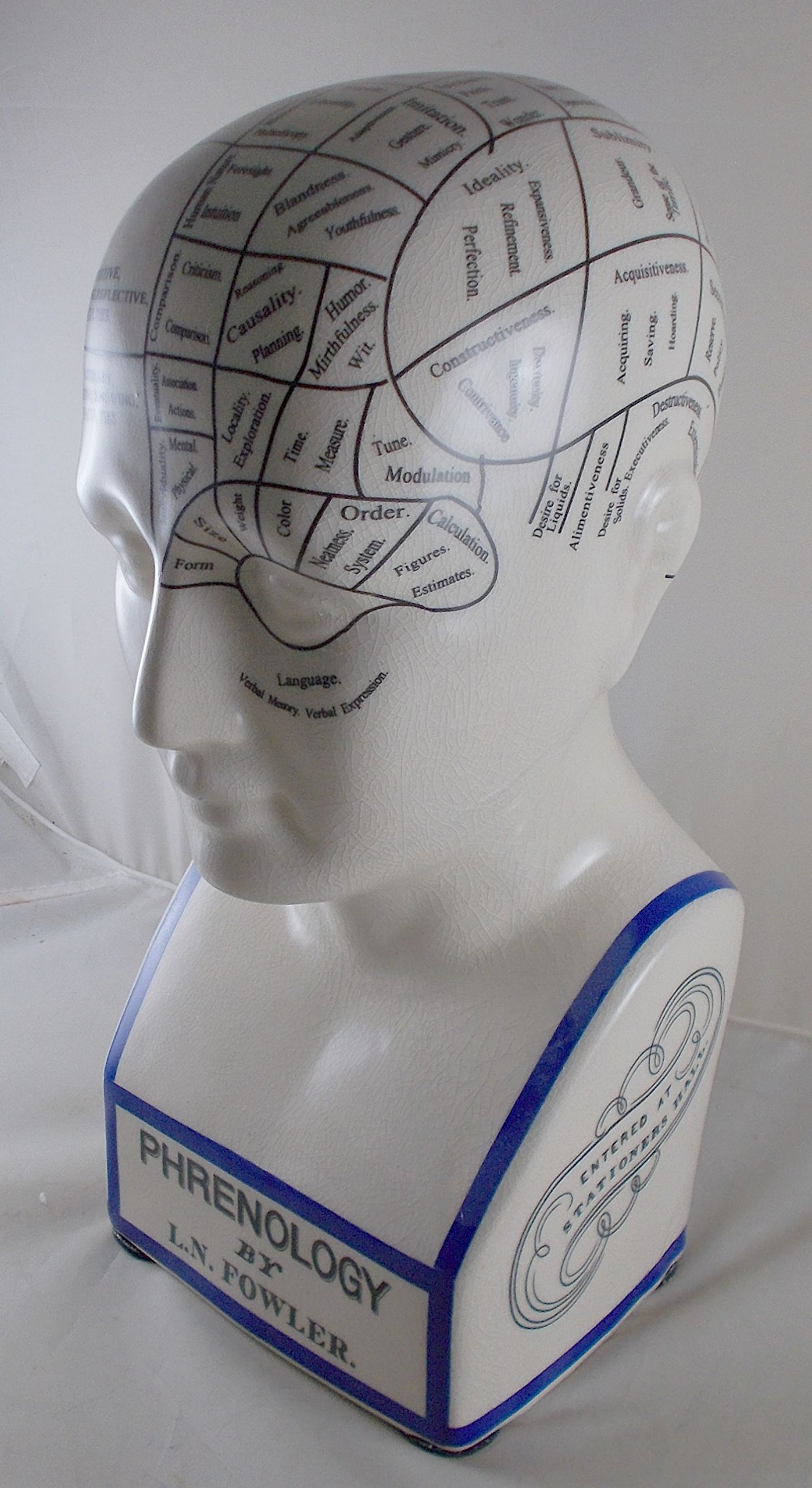L.N. Fowler Phrenology Head Statue by Magoo's General Store (Image #2)