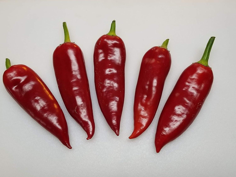 Kapia Paprika Pepper 10+ Seeds