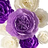 Amazon tissue paper pom pom paper flower ball for party paper flower decorations crepe paper flower large paper flowers handcrafted flowers giant mightylinksfo
